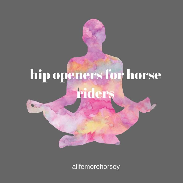 alifemorehorsey